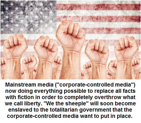 "MSM wants to be our ""disinfo dictatorship"""
